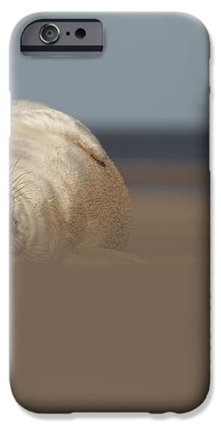 Sun Sea and Sand iPhone Case by Andy Astbury