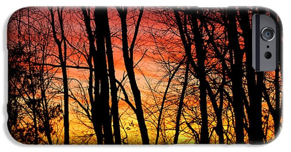 Nature Center Pond iPhone Cases - Sun Set of Fire iPhone Case by LeeAnn McLaneGoetz McLaneGoetzStudioLLCcom