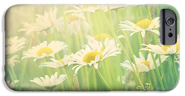 Daisy Photographs iPhone Cases - Sunday Morning iPhone Case by Amy Tyler