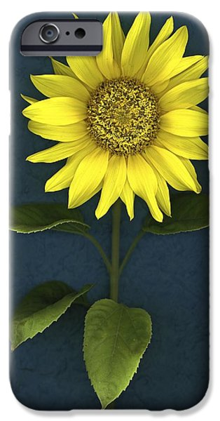 Sunflower iPhone Case by Deddeda