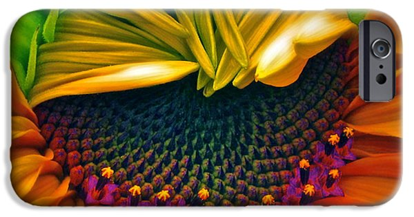 Sunflower Photograph iPhone Cases - Sunflower Smoothie iPhone Case by Gwyn Newcombe