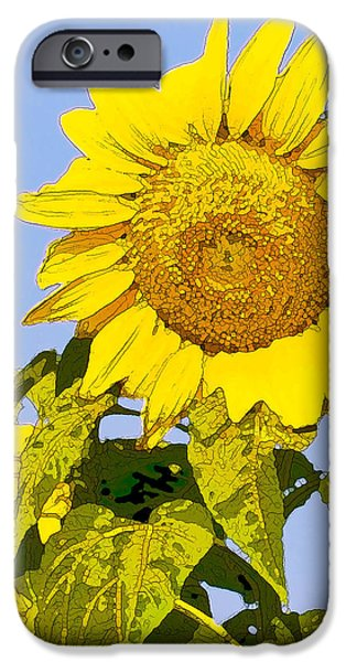 Sunflowers in Morning iPhone Case by Artist and Photographer Laura Wrede
