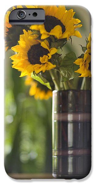 Sunflowers Photographs iPhone Cases - Sunflowers to the Sun iPhone Case by Mike Reid