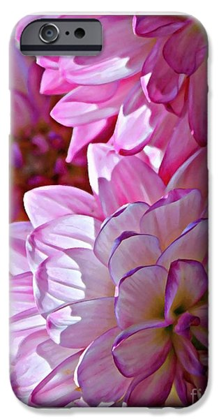 Sunlight On Flowers iPhone Cases - Sunlight through Pink Dahlias iPhone Case by Carol Groenen