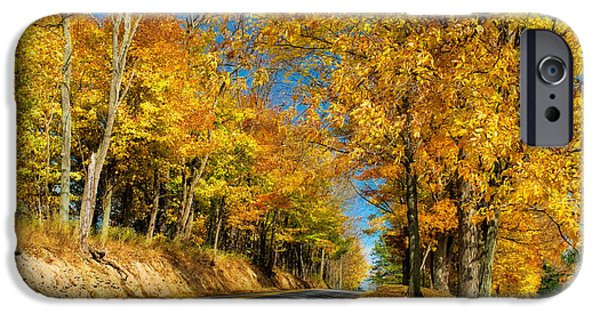 Autumn Road iPhone Cases - Sunny Country Road iPhone Case by Lois Bryan