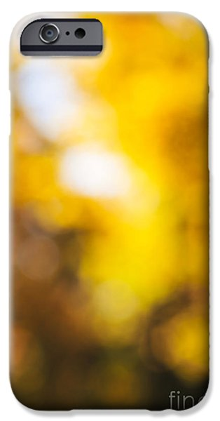 Nature Abstract iPhone Cases - Sunny fall forest iPhone Case by Elena Elisseeva