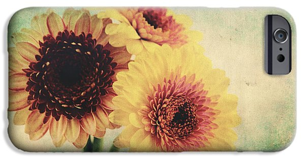 Flora Mixed Media iPhone Cases - Sunny Gerbera iPhone Case by Angela Doelling AD DESIGN Photo and PhotoArt