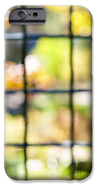 Colorful Abstract iPhone Cases - Sunny outside iPhone Case by Elena Elisseeva