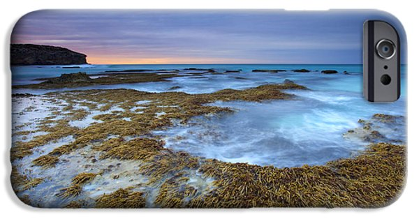 Seaweed iPhone Cases - Sunrise Beneath the Storm iPhone Case by Mike  Dawson