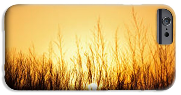 Prairie iPhone Cases - Sunrise Over Nachusa Grasslands iPhone Case by Steve Gadomski