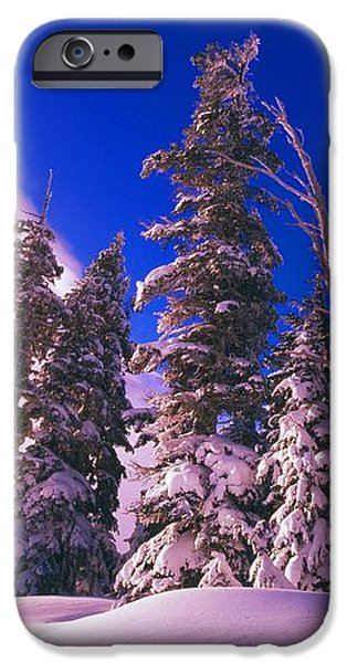 Sunrise Over Snow-covered Pine Trees iPhone Case by Natural Selection Craig Tuttle