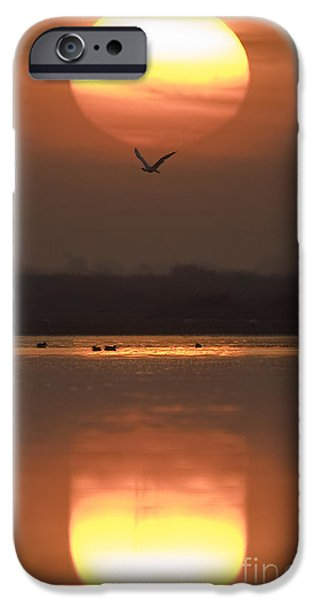 Lakescape iPhone Cases - Sunrise Reflection iPhone Case by Hitendra SINKAR