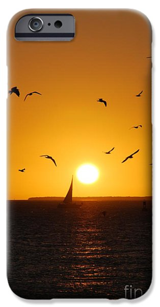 Reflections Of Sky In Water iPhone Cases - Sunset Birds Key West iPhone Case by Susanne Van Hulst
