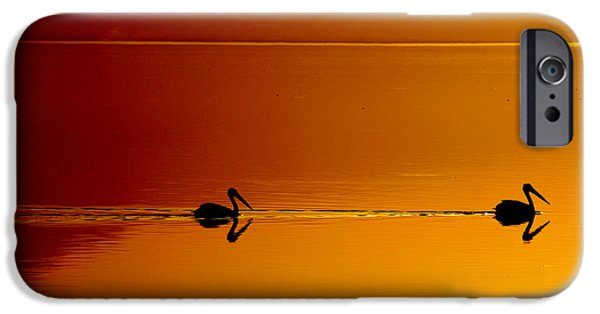 Laurie Search iPhone Cases - Sunset Cruising iPhone Case by Laurie Search