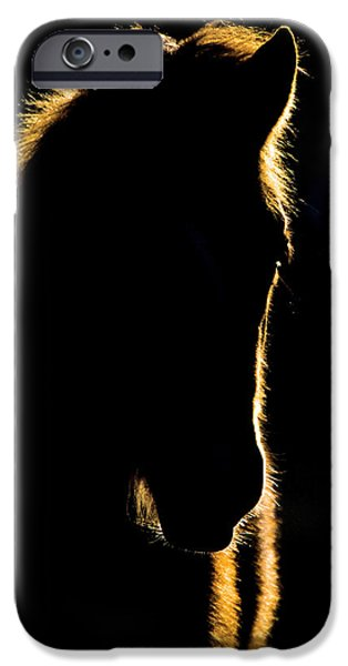 Sunset Horse Silhouette Canada iPhone Case by Mark Duffy