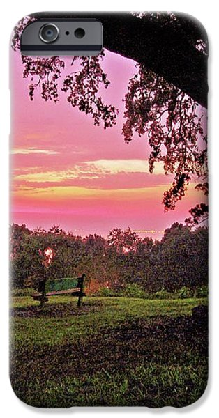Sunset on the Bench iPhone Case by Michael Thomas