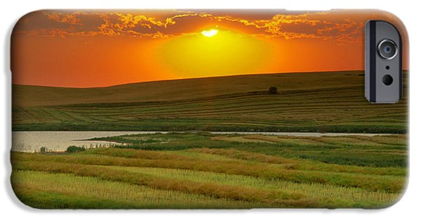 Canola Field iPhone Cases - Sunset Over Harvested Canola Field iPhone Case by Yves Marcoux