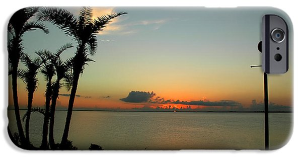 Night Lamp iPhone Cases - Sunset Over Tampa Bay iPhone Case by Carolyn Marshall