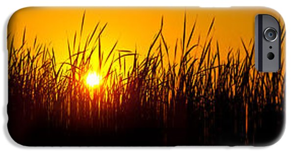 Remnant iPhone Cases - Sunset Over The Prairie iPhone Case by Steve Gadomski