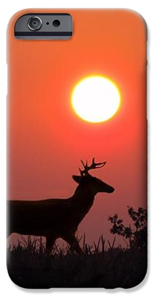 Sunset Silhouette iPhone Case by David Dehner