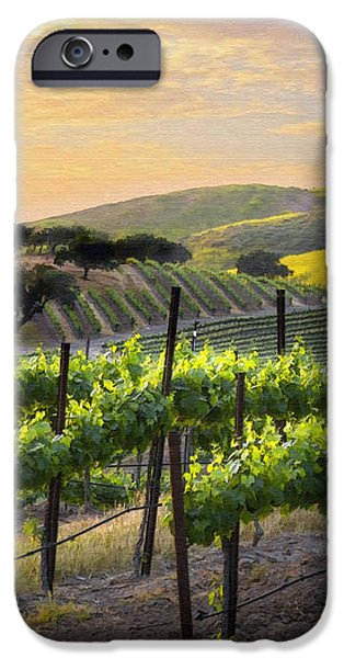 Sunset Vineyard iPhone Case by Sharon Foster