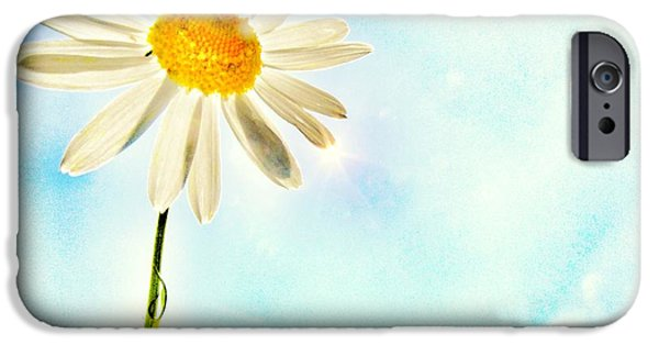 Margaret iPhone Cases - Sunshine iPhone Case by Marianna Mills