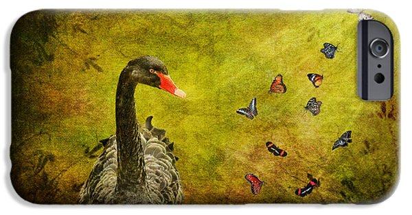 Swans... iPhone Cases - Surprises iPhone Case by Lois Bryan
