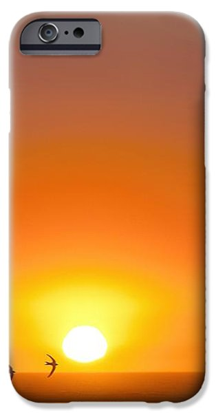 Swallows Flying At Sunset iPhone Case by Laurent Laveder