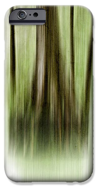 Swamp iPhone Case by Scott Pellegrin