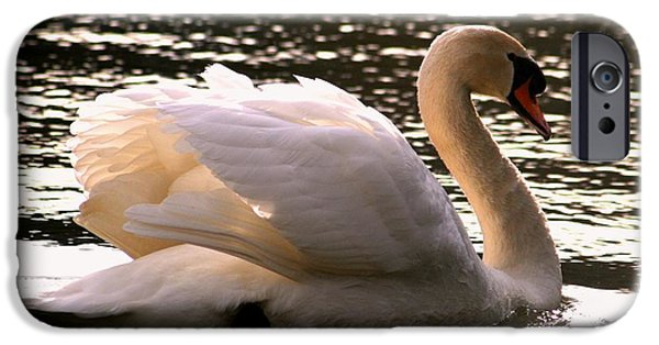 Swans... Pyrography iPhone Cases - Swan Beauty iPhone Case by Valia Bradshaw
