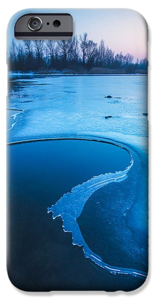 Blue iPhone Cases - Swan iPhone Case by Davorin Mance