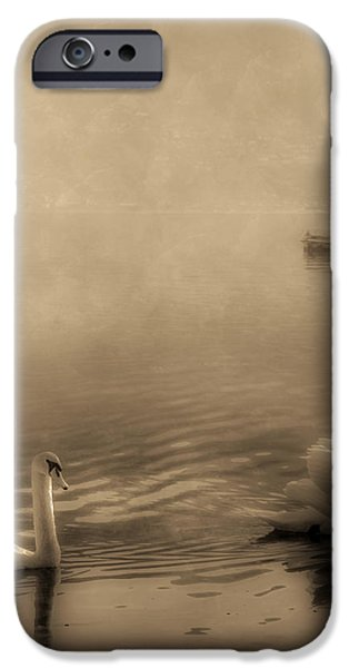 swans iPhone Case by Joana Kruse