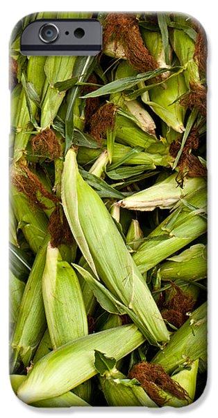 Sweet Corn iPhone Cases - Sweet Corn iPhone Case by Lauri Novak