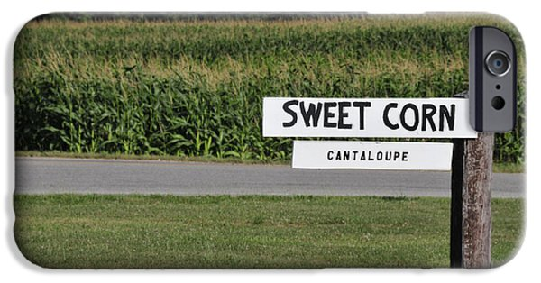 Sweet Corn Farm iPhone Cases - Sweet iPhone Case by David Arment