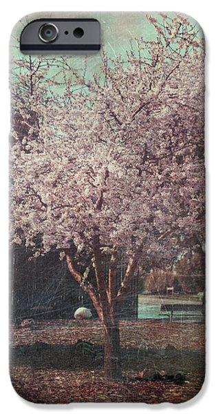 Cherry Blossoms iPhone Cases - Sweet Kisses Under the Tree iPhone Case by Laurie Search