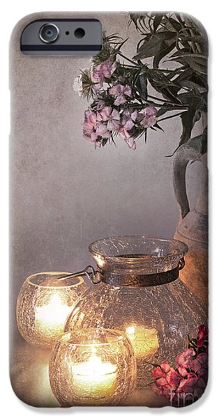 Antiques iPhone Cases - Sweet Williams faded. iPhone Case by Jane Rix
