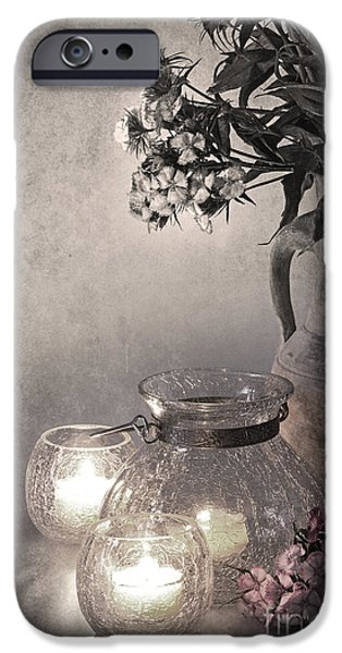 Antiques iPhone Cases - Sweet williams sepia iPhone Case by Jane Rix