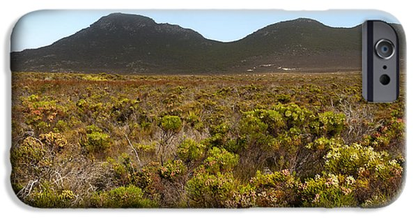 Cape Town iPhone Cases - Table Mountain National Park iPhone Case by Fabrizio Troiani