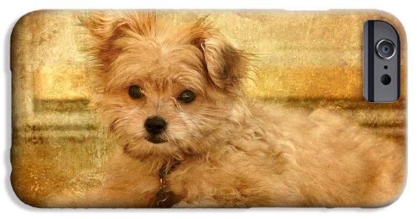 Puppy Digital Art iPhone Cases - Taking A Break iPhone Case by Angie Tirado