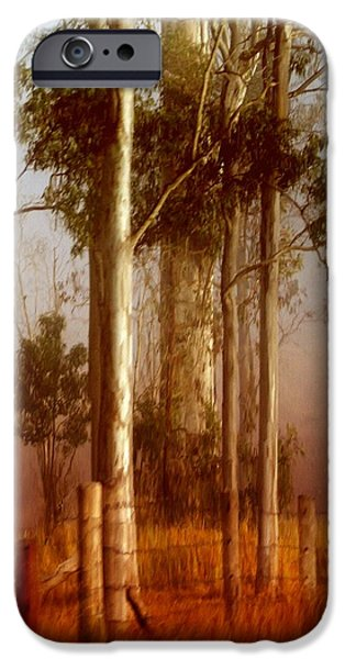 Mist iPhone Cases - Tall Timbers iPhone Case by Holly Kempe
