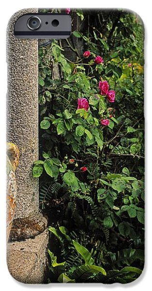 Temple And Garden Urn, The Wild Garden iPhone Case by The Irish Image Collection