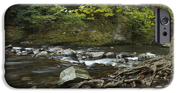 Tree Roots iPhone Cases - Tennessee Stream Panorama 6045 6 iPhone Case by Michael Peychich