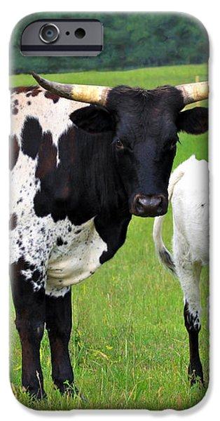 Texas Longhorn Cow and Calf iPhone Case by Karon Melillo DeVega