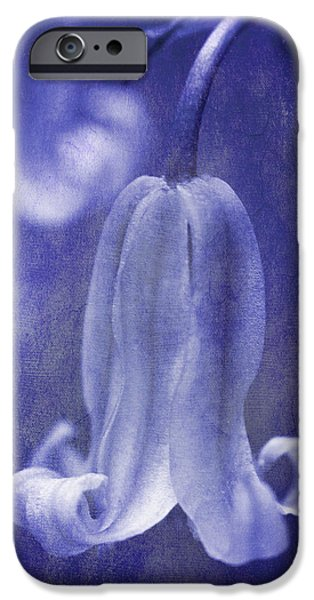 Delicate iPhone Cases - Textured Bluebell In Blue iPhone Case by Meirion Matthias