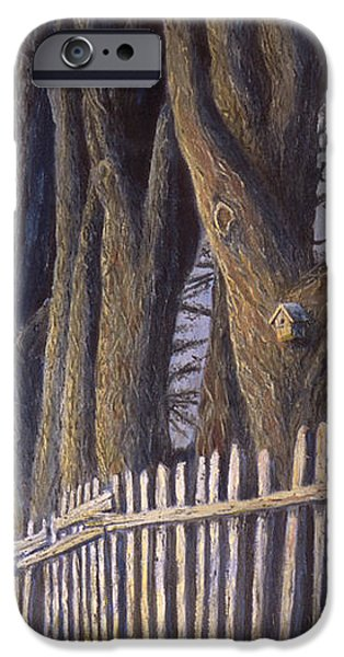 The Bird House iPhone Case by Jerry McElroy