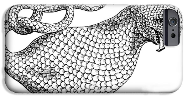 Serpent iPhone Cases - The Boas, 17th Century iPhone Case by Photo Researchers