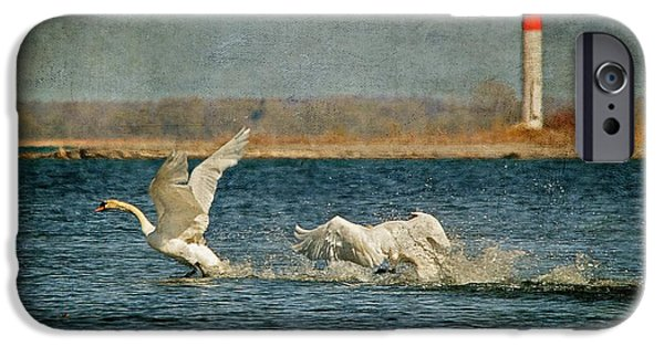 Swan iPhone Cases - The Chase Is On iPhone Case by Lois Bryan