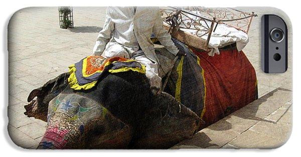 Elephant iPhone Cases - The Elephant Jockey of India iPhone Case by Paul Ward