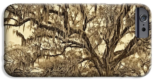 Oak Alley Plantation iPhone Cases - The Essence sepia iPhone Case by Steve Harrington