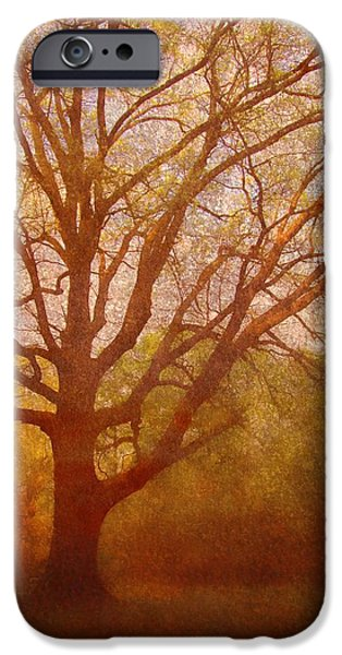 Epic Amazing Colors Landscape Digital Modern Still Life Trees Warm Natural Earth Organic Paint Chic Decor Interior Design Brett Pfister Art Digital Art iPhone Cases - The Fairy Tree iPhone Case by Brett Pfister